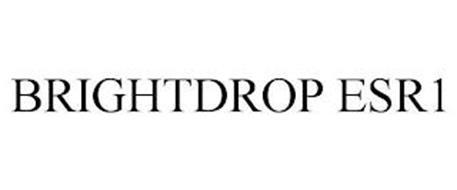 BRIGHTDROP ESR1