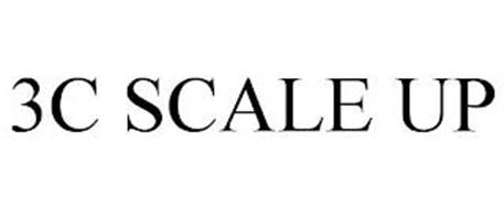 3C SCALE UP