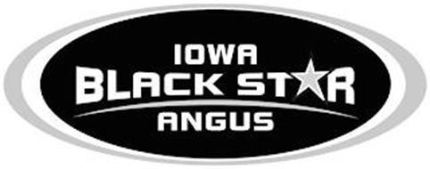 IOWA BLACK STAR ANGUS