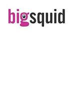 BIGSQUID
