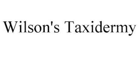 WILSON'S TAXIDERMY