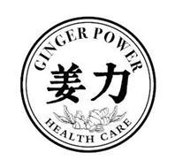 GINGER POWER HEALTH CARE