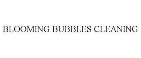 BLOOMING BUBBLES CLEANING