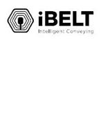 IBELT INTELLIGENT CONVEYING
