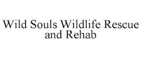 WILD SOULS WILDLIFE RESCUE AND REHAB
