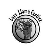 LAZY LLAMA EXOTIXZ