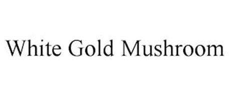 WHITE GOLD MUSHROOM