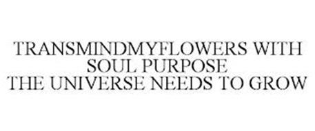 TRANSMINDMYFLOWERS WITH SOUL PURPOSE THE UNIVERSE NEEDS TO GROW