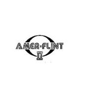 AMER-FLINT II