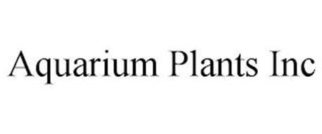 AQUARIUM PLANTS INC